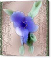 Penny Postcard Wildflower Acrylic Print