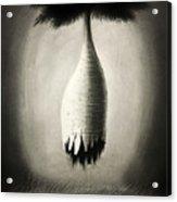 Pensamiento Inadvertido Acrylic Print