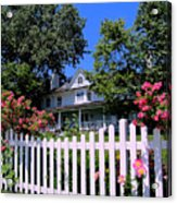 Peonies And Picket Fences Acrylic Print