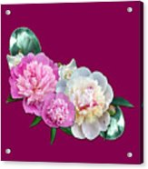 Peonies In Pink And Blue Acrylic Print