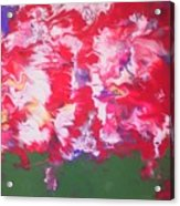 Peonies Acrylic Print