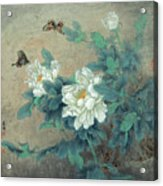 Peony Butterfly Acrylic Print