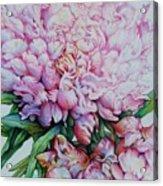 Peony Pink Parfait  Acrylic Print