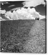 People On The Hill Bw Acrylic Print