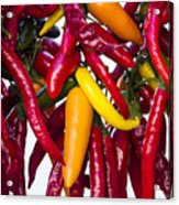 Peppers - Farmers Market - Madison - Wisconsin Acrylic Print