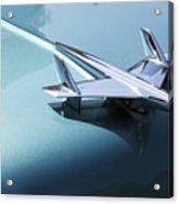 Perfect Landing Acrylic Print