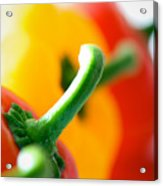 Perfect Peppers Acrylic Print