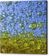 Abstract Olive Oil Acrylic Print