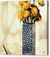 Persian Buttercup Acrylic Print