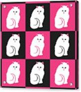 Persian Cat Pattern Acrylic Print