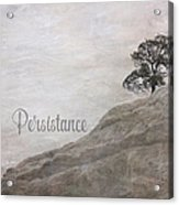Persistance Acrylic Print