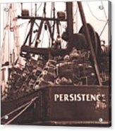 Persistence Acrylic Print