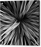Perspective Facets Acrylic Print