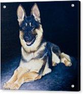 Pet Commission-shaka Acrylic Print