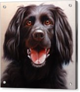 Pet Portrait Of A Black Labrador Acrylic Print