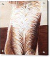 Pet Portrait Acrylic Print
