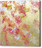 Petal Abstraction Acrylic Print