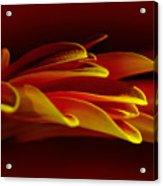 Petals Like Fingertips By Kaye Menner Acrylic Print