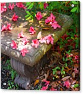 Petals On A Bench Acrylic Print