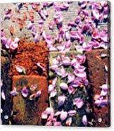 Petals On The Bricks 2 Ae Acrylic Print