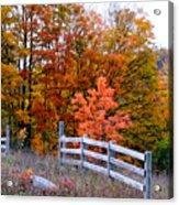 Petoskey Autumn Fence Acrylic Print
