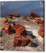 Petrified Forest National Park Acrylic Print