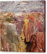 Petrified Wood 2 Acrylic Print