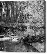Petrifying Springs Park Bridge  Acrylic Print