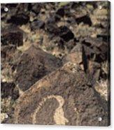 Petroglyph Acrylic Print