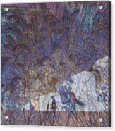 Petroglyphs 4 Acrylic Print