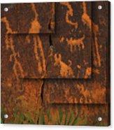Petroglyphs Agave Acrylic Print