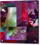 Petunia Collage Acrylic Print