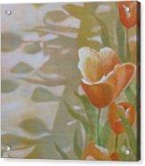 Phantom Tulips Acrylic Print