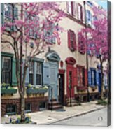 Philadelphia Blossoming In The Spring Acrylic Print