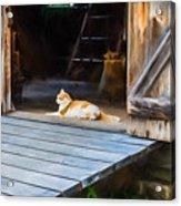 Philipsburg Manor - Gristmill Greeter Acrylic Print