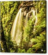 Philosopher Falls, Western Tasmania Acrylic Print
