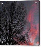 Phoenix Cloud Rising Acrylic Print