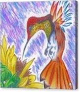Phoenix Fire Hummingbird Acrylic Print