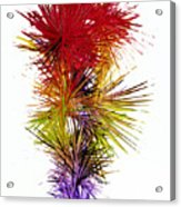 Phoenix Is Rising Series 1800.022414 Acrylic Print