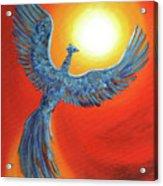 Phoenix Rising Acrylic Print