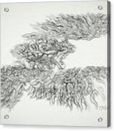 Phoenix Rising Sketch Acrylic Print