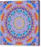 Photo Art II Acrylic Print