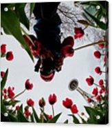 Photographer In Wonderland H084 Acrylic Print