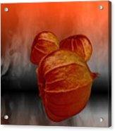 Physalis Fire Acrylic Print