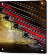Piano Wire II Acrylic Print