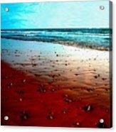 Picasso Beach Acrylic Print by Jo Ann