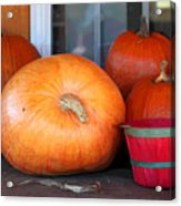 Pick A Pumpkin Acrylic Print
