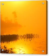 Pickerel Sunrise Acrylic Print