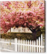 Picket Fence Charm Acrylic Print