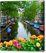 Picturesque View Amsterdam Holland Canal Flowers Acrylic Print